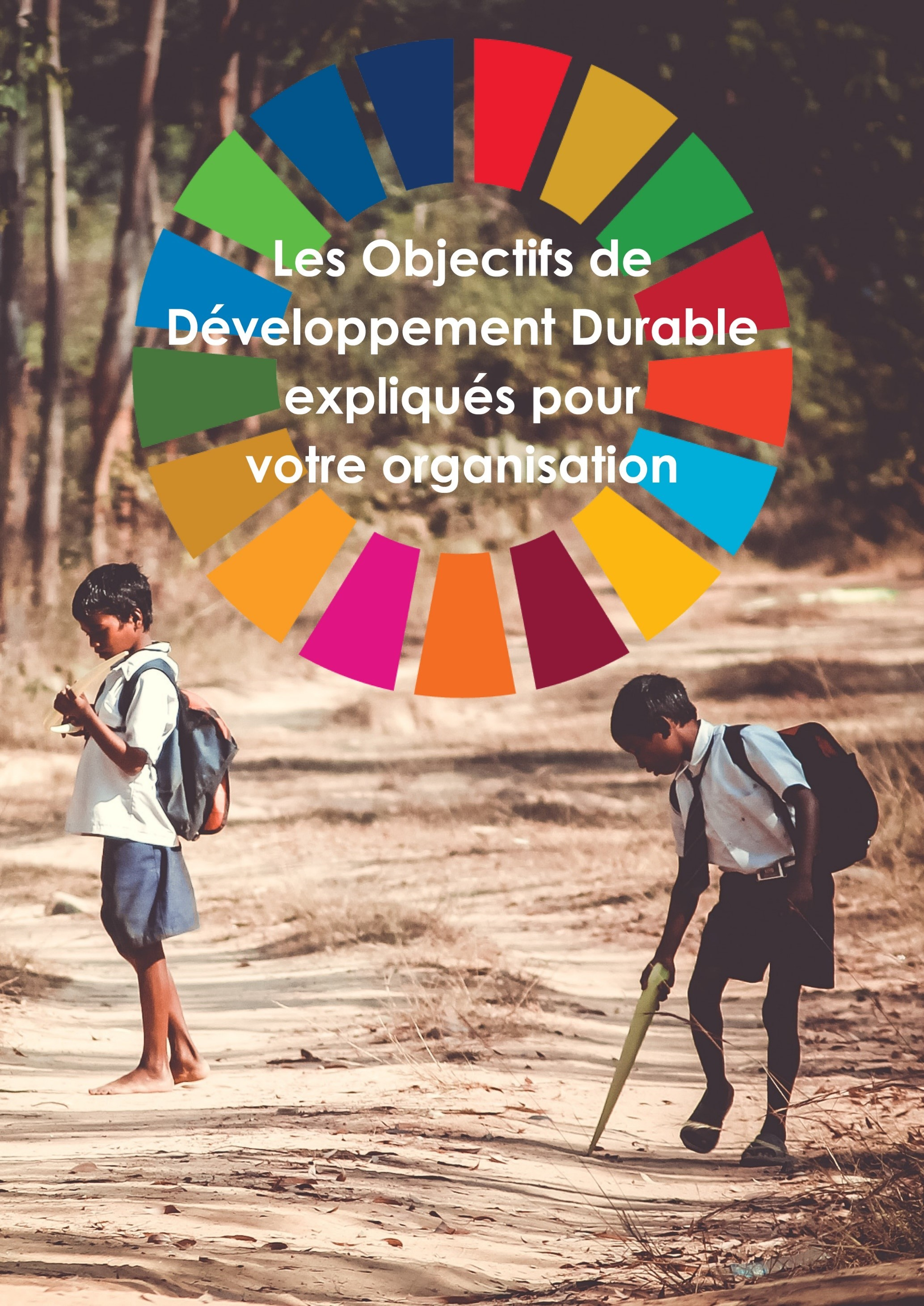 United Nations SDGs Factsheet_FR.jpg